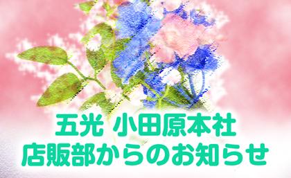 五光 小田原本社 店販部からのお知らせ