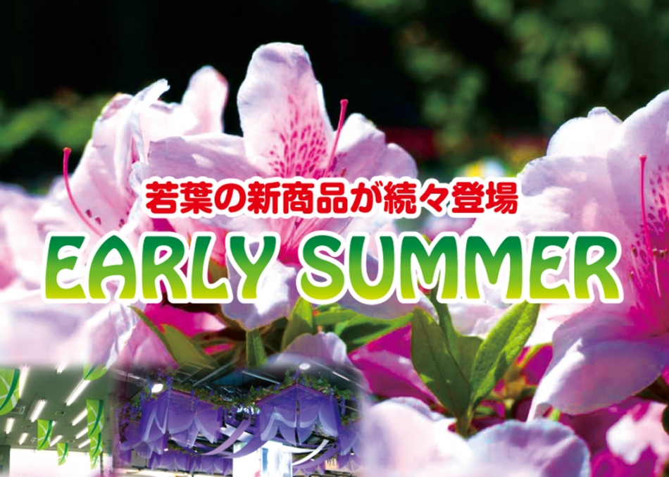 2013 EARLY SUMMER