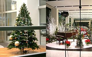 ショールームのクリスマス演出